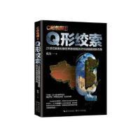 C形包围II:Q形绞索 戴旭 长江文艺出版社【新华书店 品质保证】