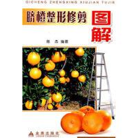 脐橙整形修剪图解 陈杰著 金盾出版社【新华书店 品质保证】