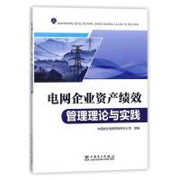 电网企业资产绩效管理理论与实践