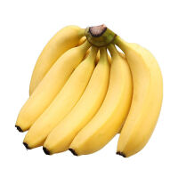 【包邮】广西现摘香蕉5斤装 香甜可口 现货直发