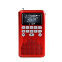 不见不散LV290便携式音箱 定时关机 插卡音乐播放器 大屏幕收音机
