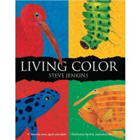 Living Color生动的色彩ISBN9780547576824