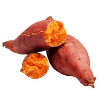 【�p十一同�r爆款】【包�]】山�|��薯25�5斤�b �t薯蜜薯番薯