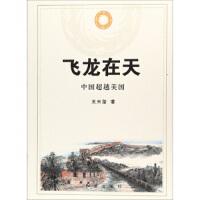 【二手书旧书95成新】 飞龙在天 中国美国 王天玺 9787505138421