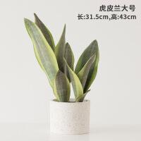 北欧ins仿真植物装饰创意小摆件客厅桌面盆栽家居室内假绿植盆景
