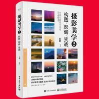 摄影构图书籍 摄影美学2构图影调实战 摄影的艺术 数码相机单反相机摄影入门教材自学教程 手机风光人像摄影
