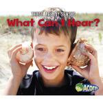 【预订】What Can I Hear?