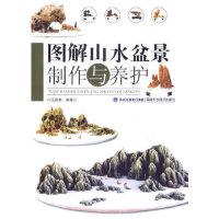 图解山水盆景制作与养护 9787533543143