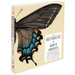 The Butterflies of North America 北美蝴蝶提香・皮尔手稿
