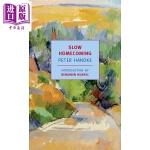 【中商原版】彼得汉德克:缓慢的归乡 英文原版 Slow Homecoming 2019年诺贝尔文学奖得主 Peter