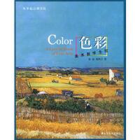 美术教学全程――色彩 张磊,聂鸿立 9787533030933 山东美术出版社