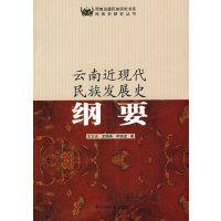 西南边疆民族研究书系――云南近现代民族发展史纲要