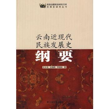 西南边疆民族研究书系——云南近现代民族发展史纲要
