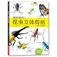 昆虫立体剪纸
