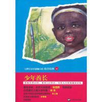 青少版世界名著--少年酋长 (法)吉尔 上海文艺出版社【新华书店 质量保障】
