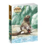 动物小说大王沈石溪品味成长书系・狼獾家族