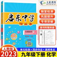 启东中学作业本九年级化学下册人教版 2020新版九年级下化学同步练习册
