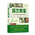 现货 园艺图鉴 [�@芸�龛a:花や野菜いっぱいの庭づくり] 后浪出版