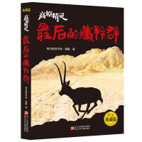 高原精灵:最后的藏羚群(黑金典藏版)