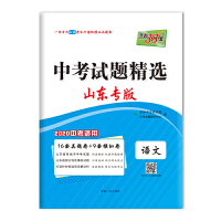 天利38套 山东专版 中考试题精选 2020中考必备--语文