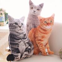 可拆洗仿真猫咪抱枕3D毛绒玩具猫型玩偶长条可爱少女心礼物