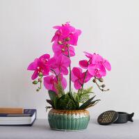 欧式客厅餐桌茶几盆栽摆设蝴蝶兰花绢花瓶装饰仿真花卉假花艺套装