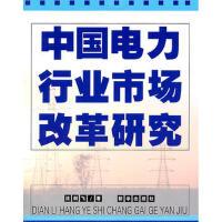封面有磨痕-XX-中国电力行业市场改革研究 沈剑飞 9787501169184 新华出版社 知礼图书专营店