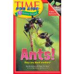 Time For Kids: Ants! 美国《时代周刊》儿童版:蚂蚁 ISBN 9780060576400