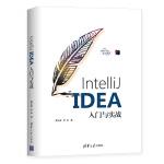 IntelliJ IDEA入门与实战