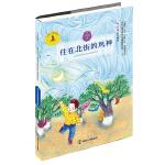 九色鹿・儿童文学名家获奖作品系列 住在北街的风神