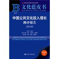 文化蓝皮书:中国公共文化投入增长测评报告(2019)