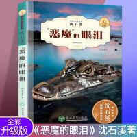 新版沈石溪 动物小说恶魔的眼泪 中小学生课外书畅销儿童书三四五六年级经典读物 沈石溪动物小说系列