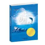 国际大奖小说――梦回海豚岛