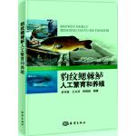 豹纹鳃棘鲈人工繁育和养殖