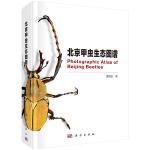 北京甲虫生态图鉴