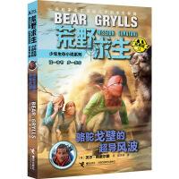 荒野求生少年生存小说拓展版13:骆驼戈壁的超导风波