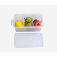 冰箱里的收纳盒 冰箱内部收纳盒冰柜里放冷冻水果的保鲜盒分隔盒子整理箱隔离神器 透明款(附3个内格)