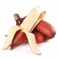 【包�]】福建土�敲廊私都t香蕉5斤�b 新�r���水果