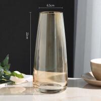 轻奢玻璃花瓶摆件现代简约客厅透明水培插花瓶北欧式餐桌装饰创意 中等