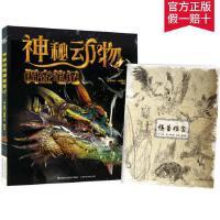 【送怪兽档案】神秘动物调查笔记 恐龙美杜莎儿童百科全书中小学生8-14岁少儿读物科普书籍 小学二年级课外阅读书
