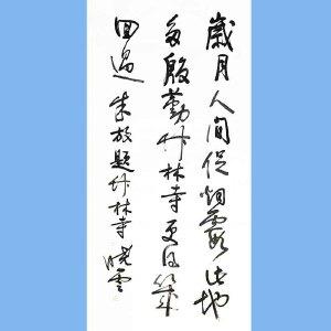著名书法家,国家一级美术师,中国书法家协会理事,江苏省书法家协会副主席,江苏省美术馆馆长孙晓云(朱放题词)