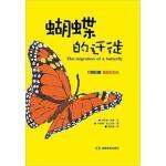 蝴蝶的迁徙