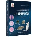 小鼠组织学