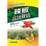 辣椒高效栽培