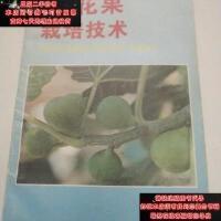 【二手旧书9成新】无花果栽培技术9787508203737