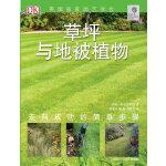 草坪与地被植物-绿手指丛书