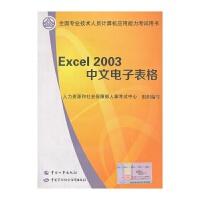全国专业技术人员计算机应用考试教材Excel2003中文电子表格
