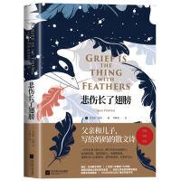 正版新书外国散文随笔【精装彩图】悲伤长了翅膀 父亲和儿子写给妈妈的散文诗一部悲伤的回忆录童话诗歌绘画情感外国文学