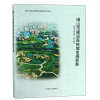 佛山市建设森林城市摄影集/佛山市建设国家森林城市系列丛书