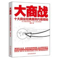 【RT1】大商战 肖宾著 武汉出版社 9787543070059